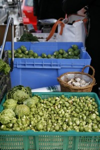 Sprouts from Hannah Brook Farm